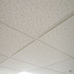 Ceiling Tiles Paint image