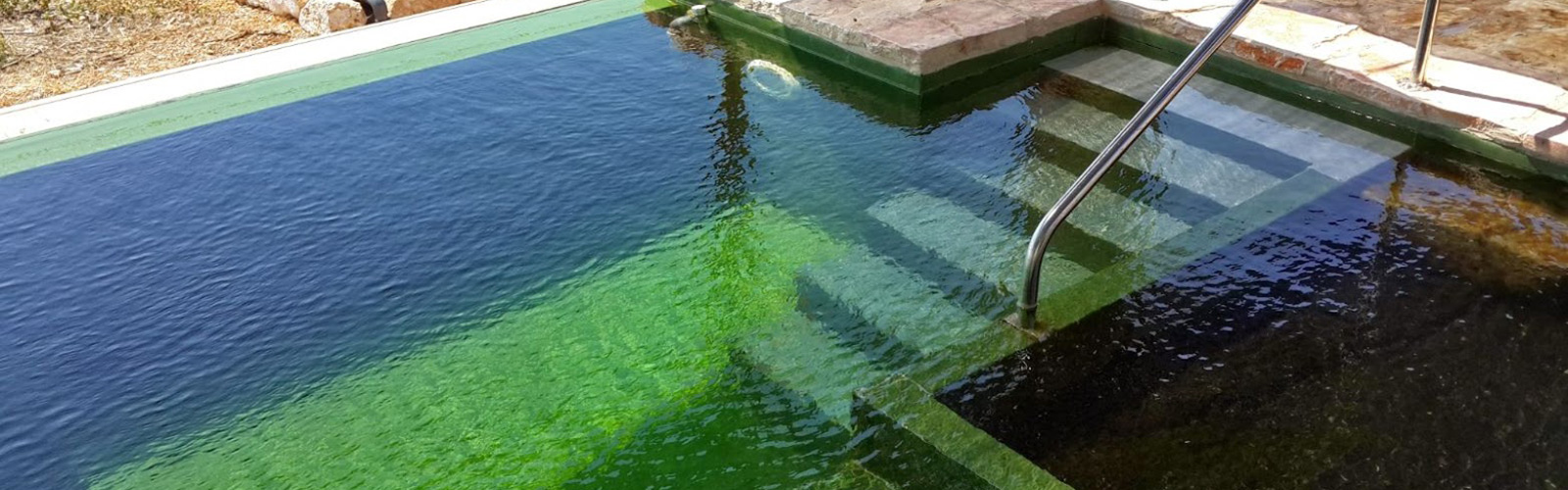 Swimming Pool Membrane Green img