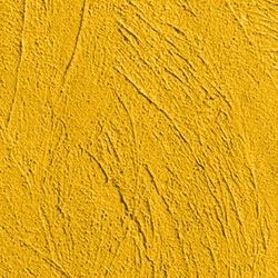 Coarse Textured Wall Paint image
